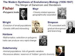 synthesis people